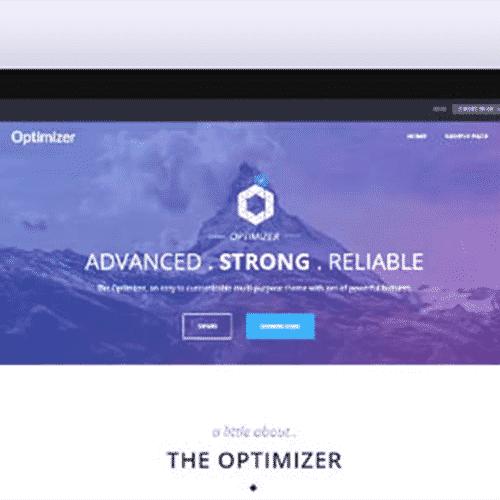 Optimizer Pro Flexible WordPress Theme